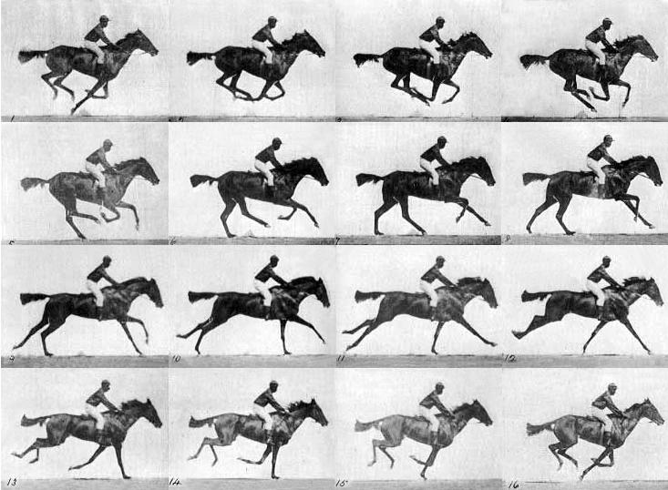 race horse 1878