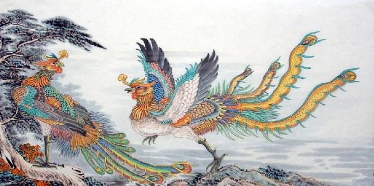 chinese phonix